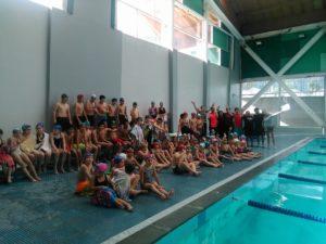 campeonato-de-natacion