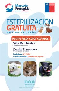 Aún quedan cupos disponibles para próxima jornada de esterilización y chipeo de mascotas