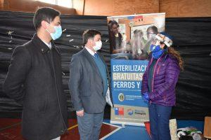 Municipio de Aysén esterilizará a más de mil mascotas abarcando los diversos puntos del territorio comunal