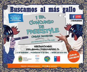 Municipio de Aysén invita a participar del Primer Festival de FreeStyle para adolescentes